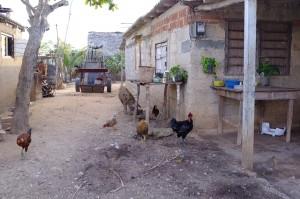 une rue de Playa Herradura